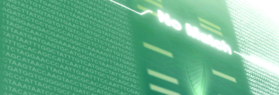 Novel Gene Test to Improve Transplantation, Research